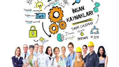 Photo of İnsan Kaynakları Yönetimi Bölümü Olan Üniversiteler